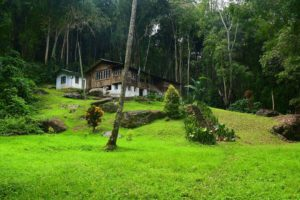 Amani_Nature_Reserve_Tanga_Tanzania_Zara_Tours_1